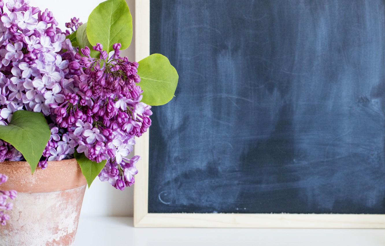 Фото обои цветы, букет, доска, сирень