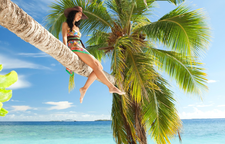 простые картинки отдых на море у пальмы вот его
