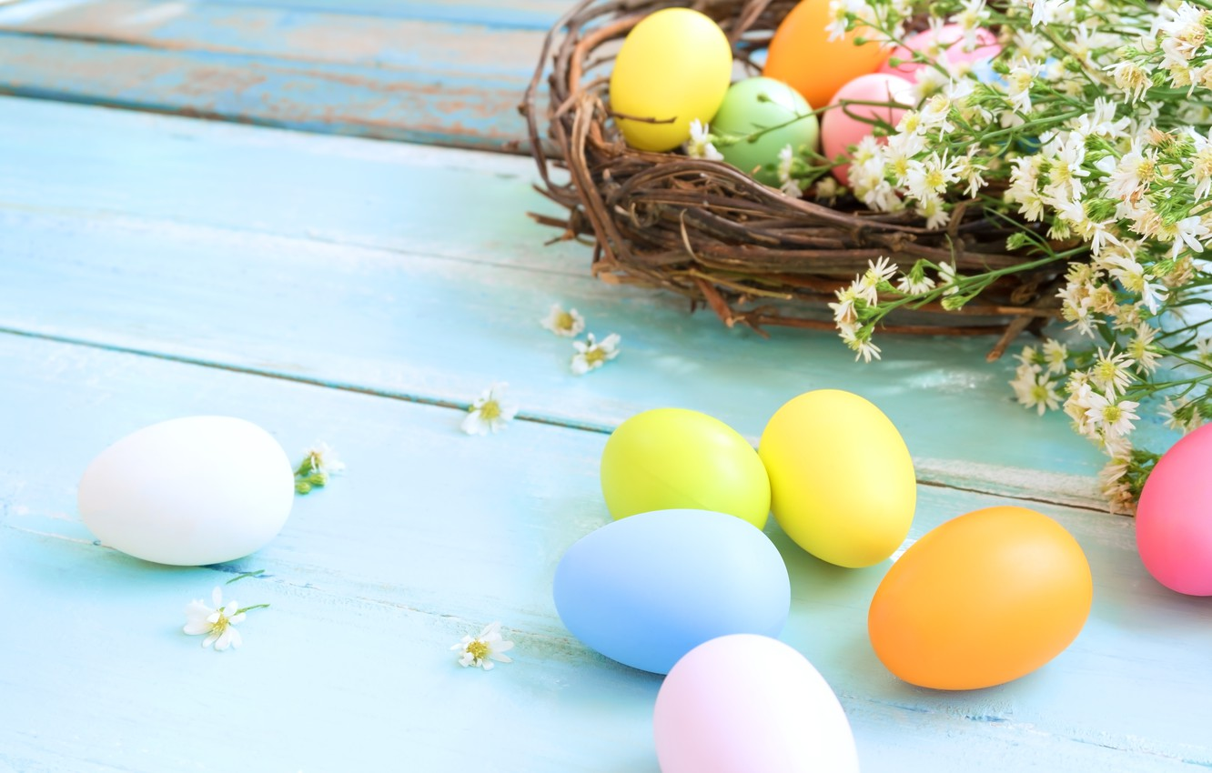 Фото обои цветы, корзина, яйца, весна, colorful, Пасха, wood, flowers, spring, Easter, eggs, decoration, Happy, tender