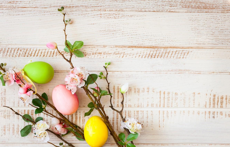 Фото обои цветы, ветки, apple, весна, Пасха, wood, blossom, flowers, spring, Easter, eggs, decoration, Happy, яйца крашеные