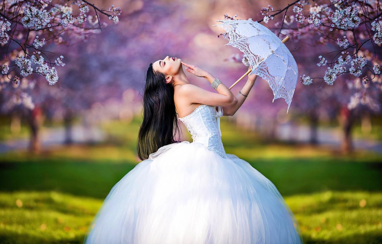 Фото обои девушка, деревья, ветки, поза, зонтик, настроение, весна, сад, невеста, цветение, свадебное платье