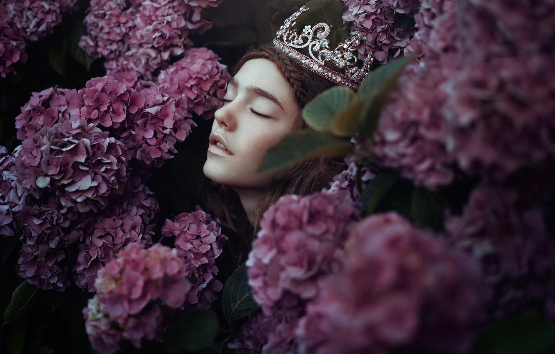 Фото обои девушка, цветы, лицо, настроение, корона, гортензия, Bella Kotak, A new day whispers