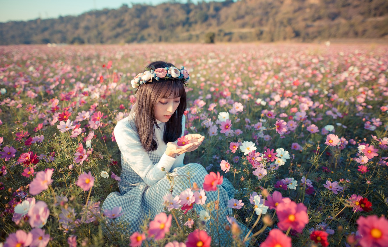 Фото обои поле, девушка, цветы, настроение, луг, азиатка, венок, космея