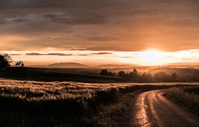 Фото обои дорога, поле, ночь