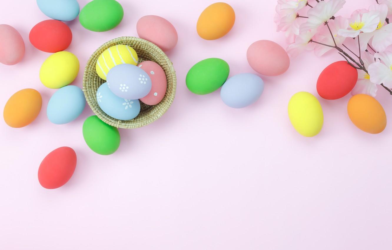Фото обои цветы, фон, розовый, яйца, весна, colorful, Пасха, wood, pink, blossom, flowers, spring, Easter, eggs, decoration, …