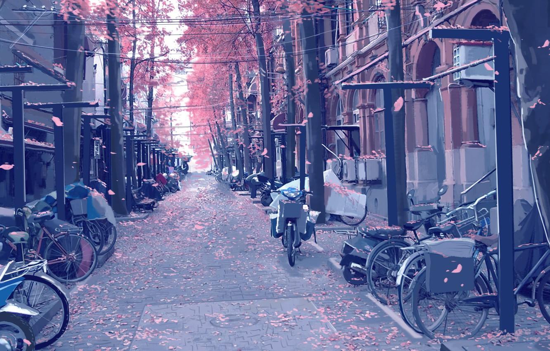 Фото обои мотоциклы, улица, столбы, провода, брусчатка, лепестки, art, велосипеды, цветение весной, безлюдная, Xi Chen Chen, мопеды