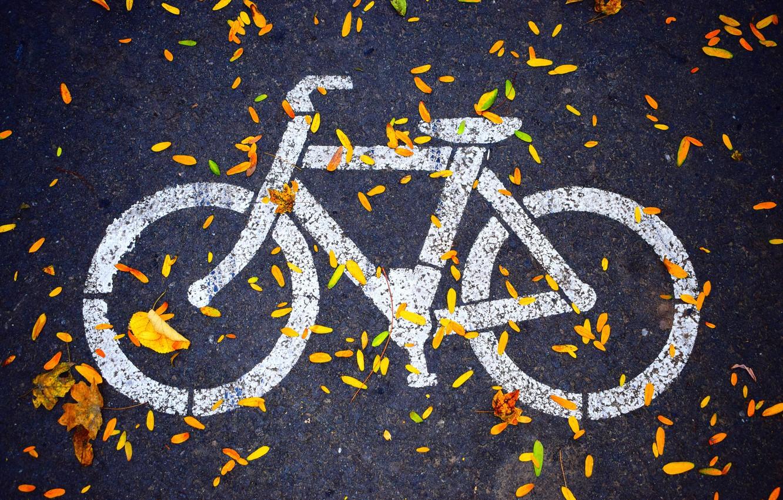 Фото обои осень, асфальт, hdr, тротуар, велодорожка, рисунок на асфальте, велоиспед, листья на дороге, значок велосипеда, листья …