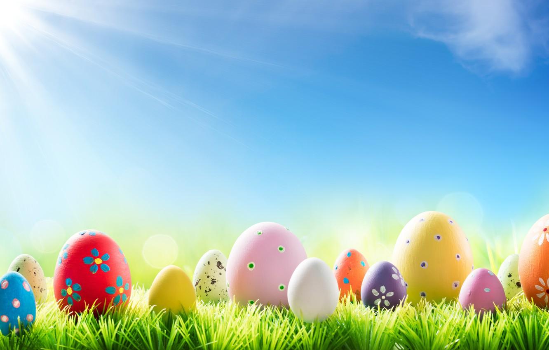 Фото обои трава, солнце, цветы, весна, Пасха, flowers, spring, Easter, eggs, decoration, Happy, яйца крашеные