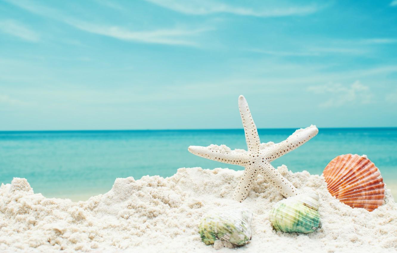 Фото обои песок, море, пляж, звезда, ракушки, summer, beach, sea, blue, sand, starfish, seashells