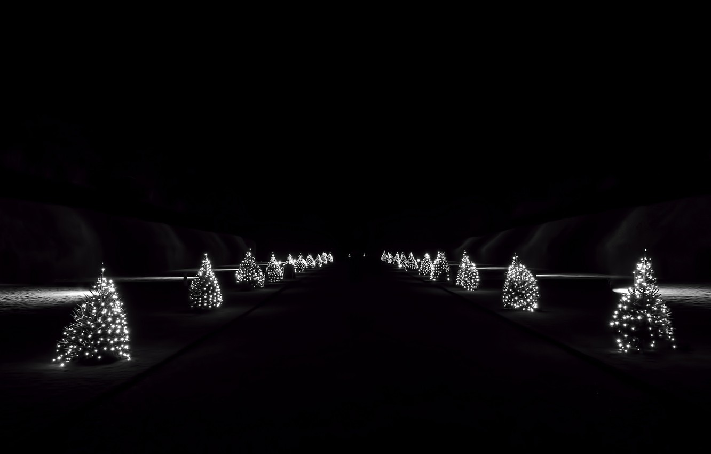Фото обои ночь, праздник, ёлки