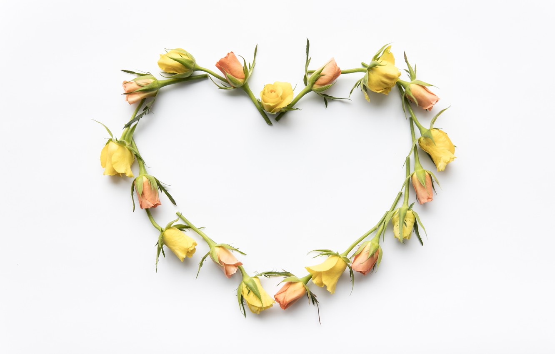 Фото обои любовь, цветы, сердце, розы, желтые, love, бутоны, heart, yellow, romantic, roses, bud, floral