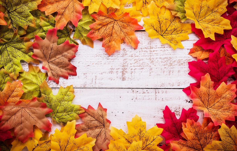 Фото обои осень, листья, фон, дерево, wood, background, autumn, leaves, осенние, maple