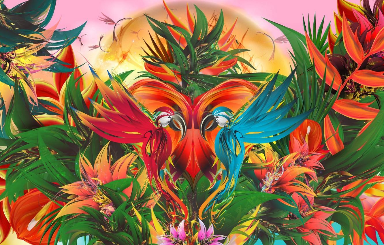 Фото обои птицы, узор, краски, симметрия
