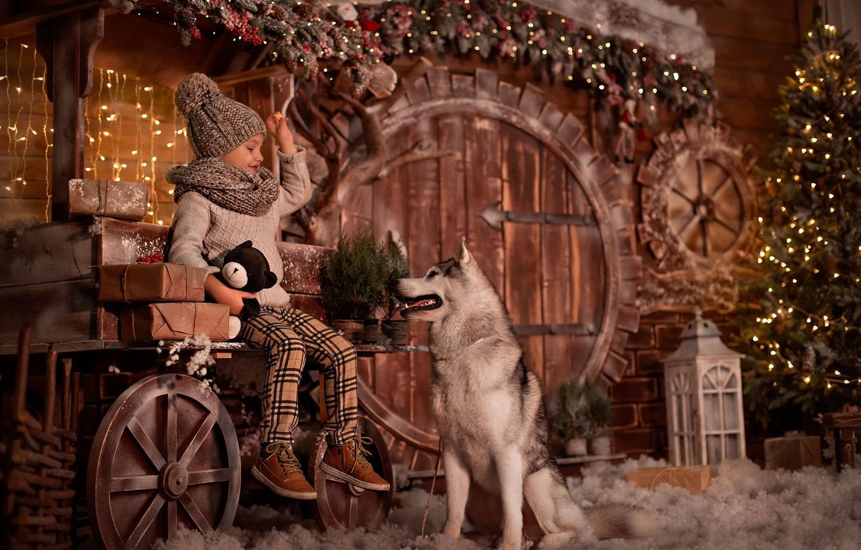 Фото обои елка, новый год, собака, девочка, животоное