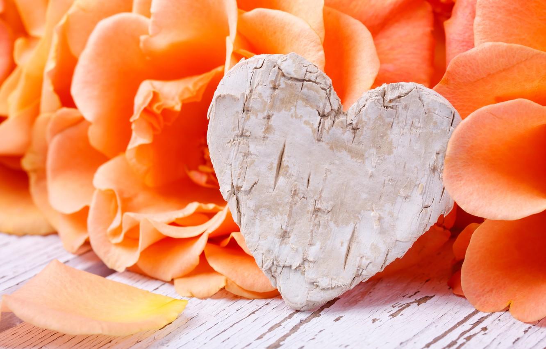 Фото обои розы, лепестки, love, heart, flowers, romantic, roses, valentine`s day