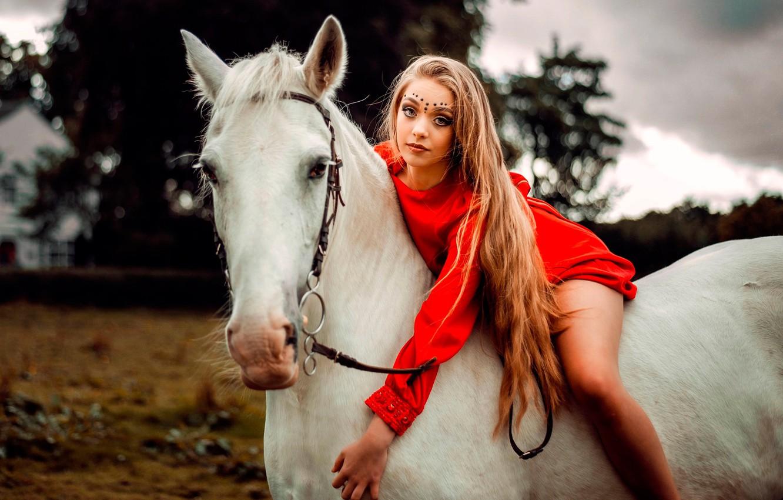 Фото обои девушка, поза, конь, портрет, макияж, платье, прическа, красотка, наездница, в красном, боке, Carlos, белая лошадь, …