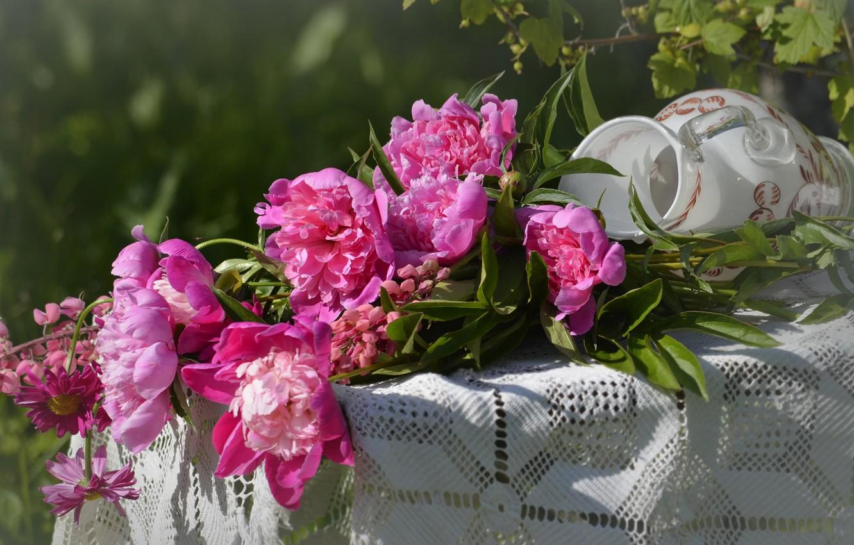 Фото обои лето, цветы, букет, пионы, популярные, ниф