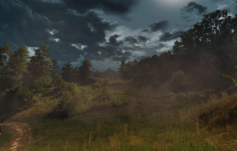 Фото обои Поле, Трава, Ведьмак, The Witcher, The Witcher 3 Wild Hunt, Ведьмак 3 Дикая Охота, Ведьмак …