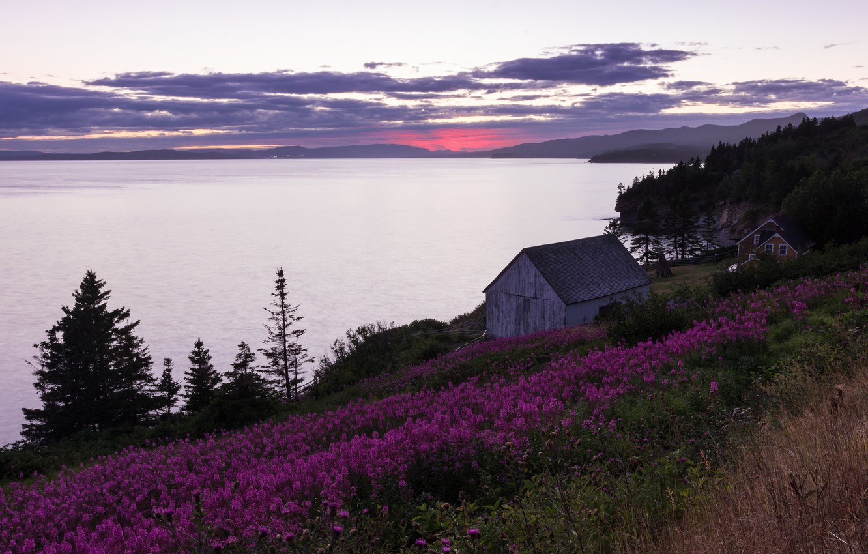 Фото обои цветы, озеро, дом, Канада