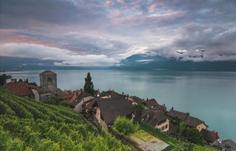 Фото обои озеро, Швейцария, Lake Geneva, Vaud, Saint-Saphorin