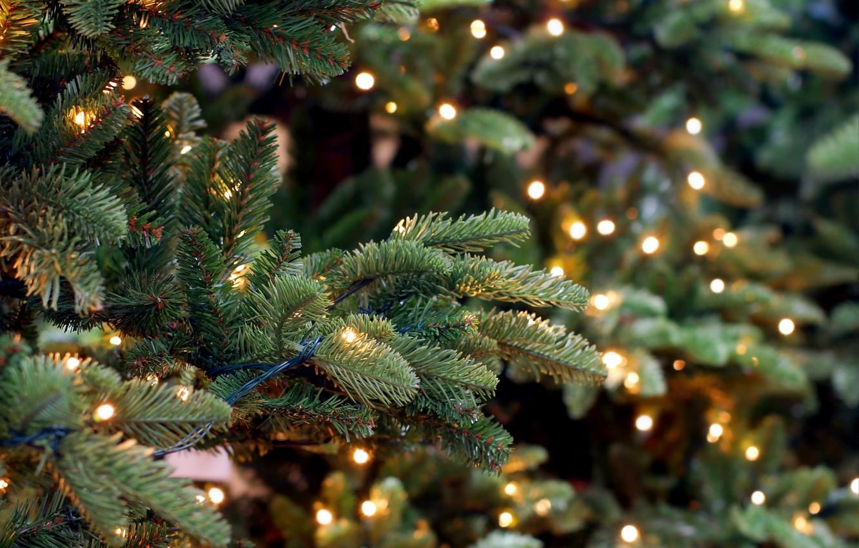Фото обои Новый Год, Рождество, merry christmas, decoration, xmas, fir tree