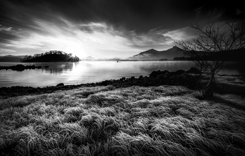 Черно белые картинки на телефон природа