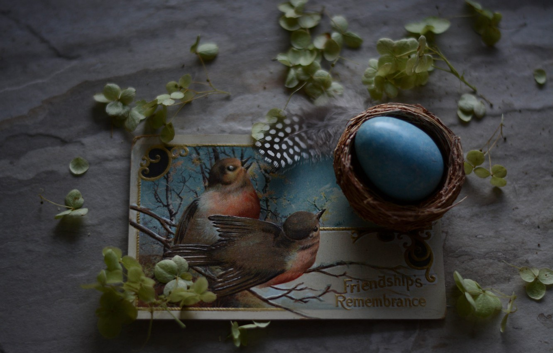 Фото обои Яйцо, Пасха, Праздник, Открытка