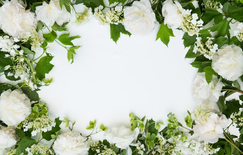 Фото обои цветы, фон, букет, рамка, Flowers, bundle