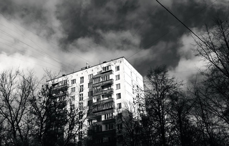 Wallpaper of Эйфелева башня, отражение, чб background & HD image | 850x1332