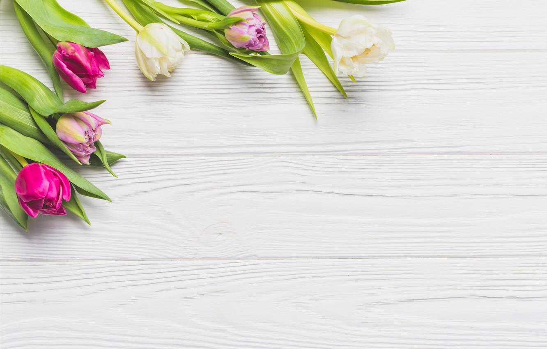 Фото обои цветы, весна, colorful, тюльпаны, доска, wood, pink, flowers, tulips, spring