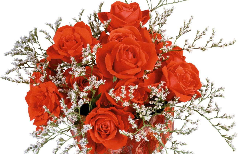 Фото обои розы, букет, лепестки