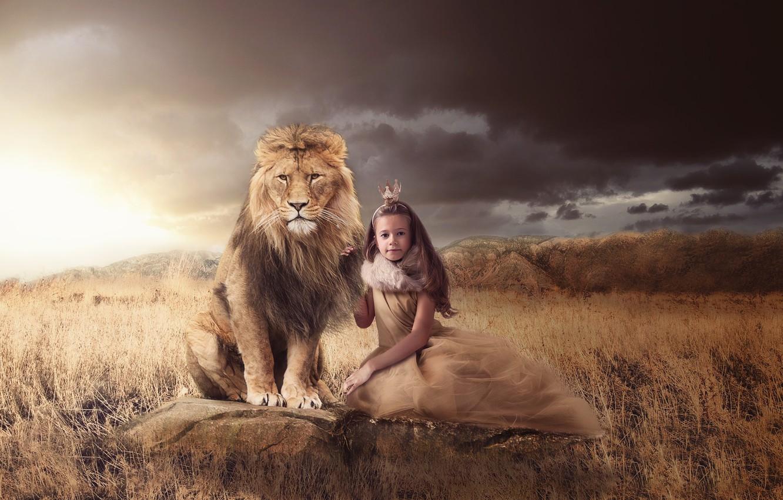 Фото обои трава, природа, камни, животное, хищник, лев, корона, девочка, принцесса, королева