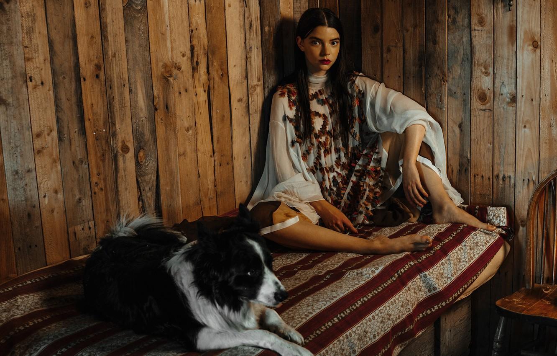 обои кровать собака актриса брюнетка стул фотосессия