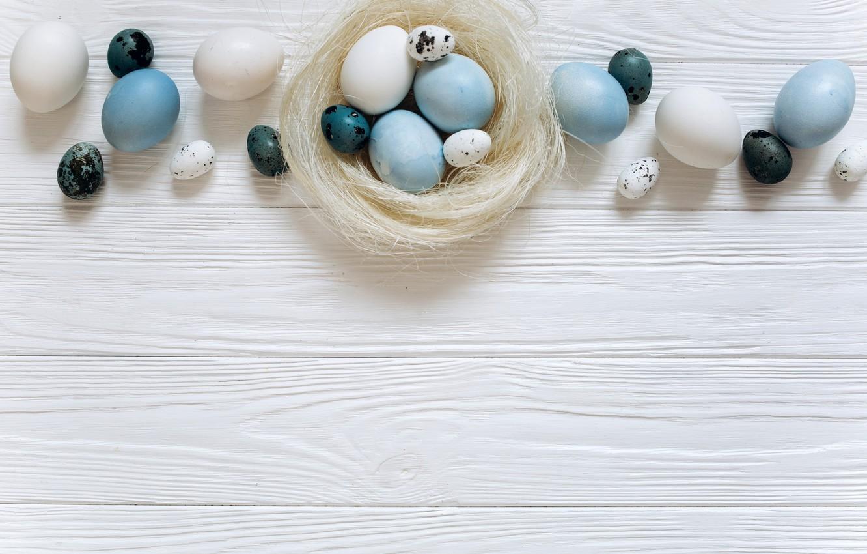 Фото обои яйца, голубые, Пасха, white, белые, wood, blue, spring, Easter, eggs, decoration, Happy, tender