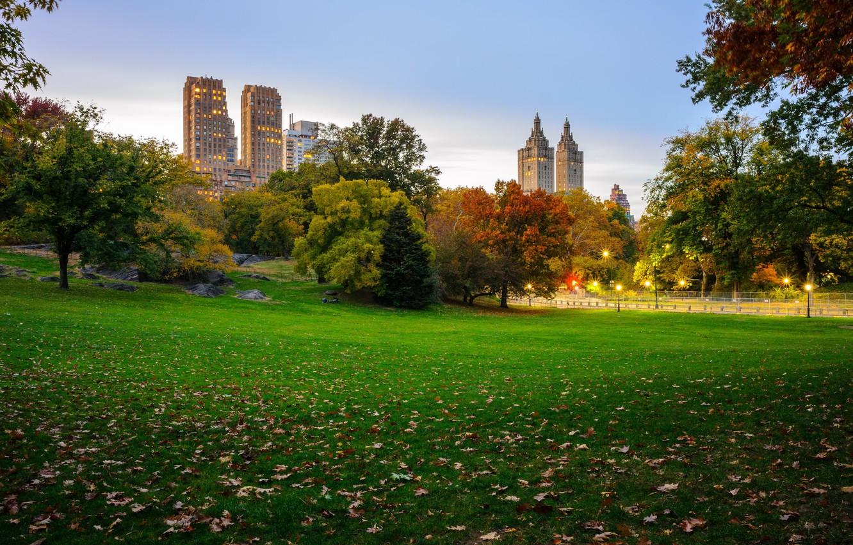 Фото обои осень, листья, деревья, Нью-Йорк, фонари, США, небоскрёбы, лужайка, Центральный парк