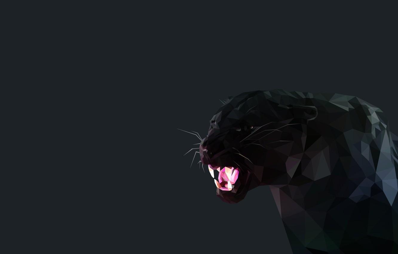 Фото обои черный, Минимализм, клыки, Черная пантера