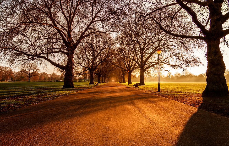 Фото обои Sunrise, London, Battersea Park