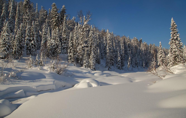 Обои Зима Сибирь