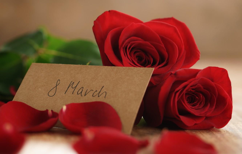 Фото обои букет, лепестки, red, 8 марта, romantic, gift, roses, красные розы
