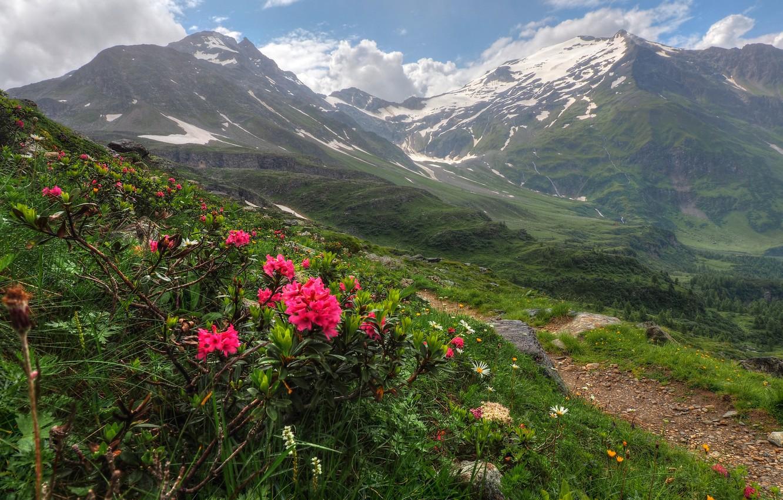 Обои alps, salzburg, целль-ам-зе, austria, Zell am see, зальцбург, австрия. Пейзажи foto 7