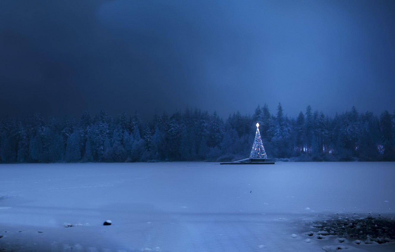 Фото обои холод, зима, снег, праздник, ёлка