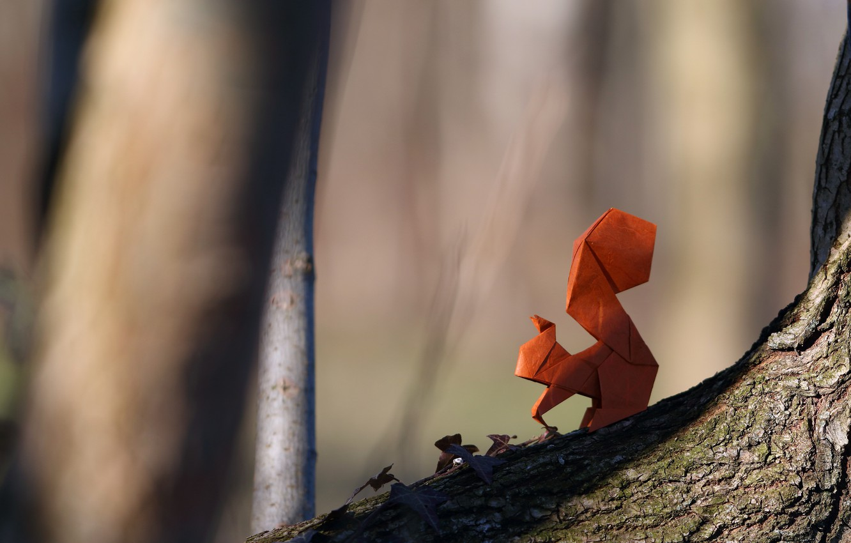 Обои Белка, Origami, бумага. Разное foto 6
