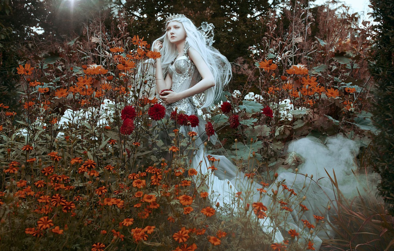 Фото обои девушка, цветы, стиль, настроение, корона, платье, диадема, принцесса, длинные волосы, Maria Amanda, Bella Kotak, Maria …