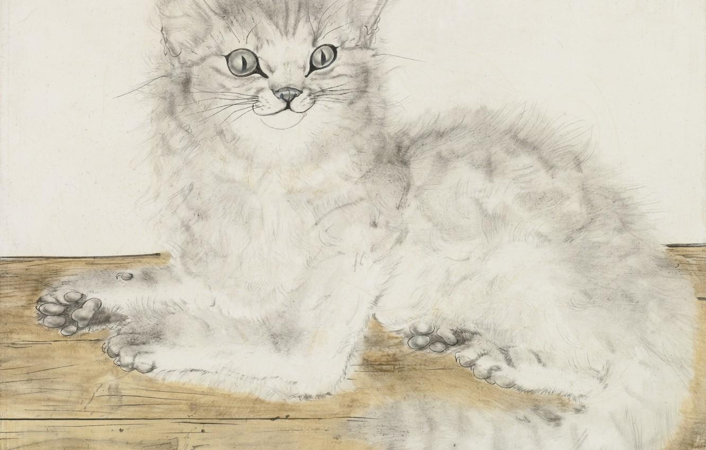 Фото обои доски, Кошка, пушистая, 1949, радостная, Цугухару, Фудзита