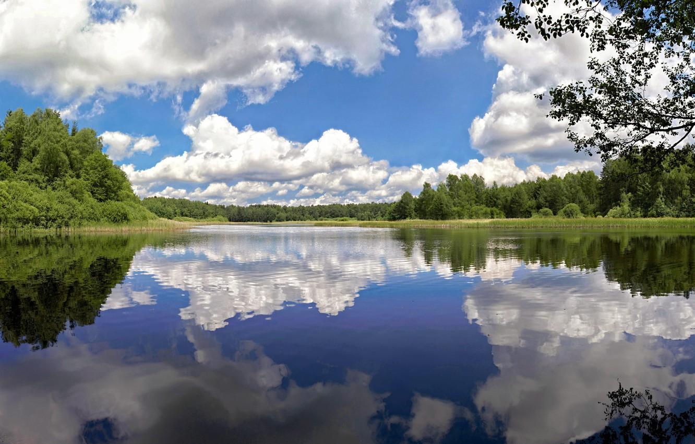 Фото обои облака, деревья, озеро, пруд, отражение, Чехия, Czech Republic, Nova Bystrice, Pond Blanco