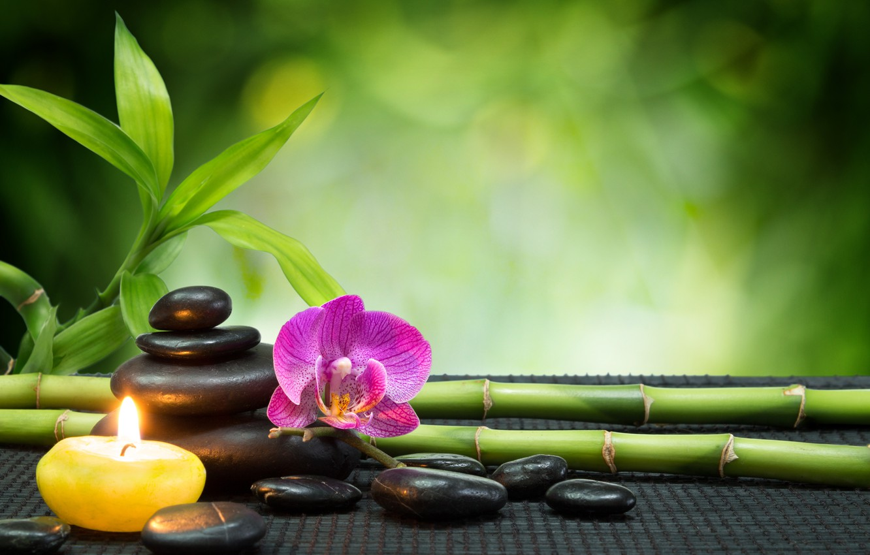 Фото обои цветы, бамбук, орхидеи, спа камень