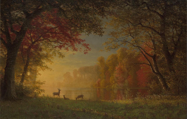 Фото обои лес, пейзаж, природа, арт, олени, Albert Bierstadt, Альберт Бирштадт, Indian Sunset - Deer by a …