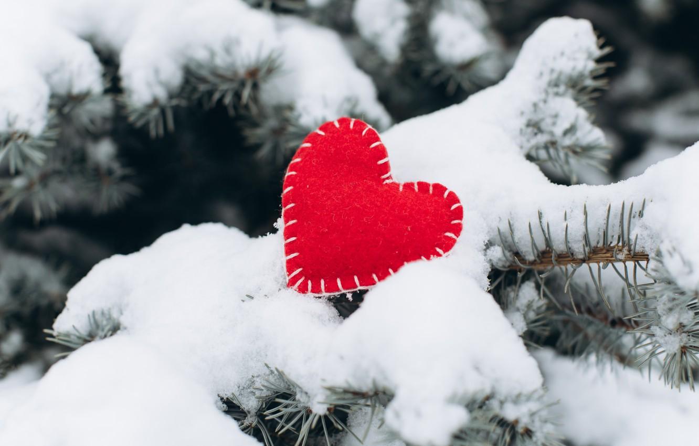 Фото обои зима, снег, любовь, сердце, елка, red, love, heart, winter, snow, romantic, valentine, fir tree