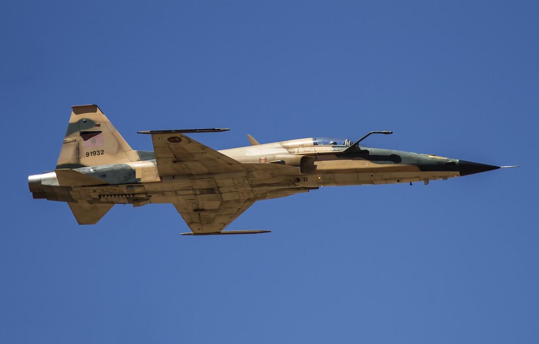 Обои истребители, «тайгер» ii, многоцелевые, F-5e, tiger ii. Авиация foto 16