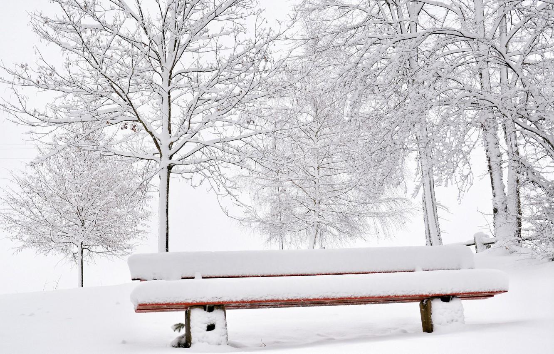скамейка под снегом картинки человек